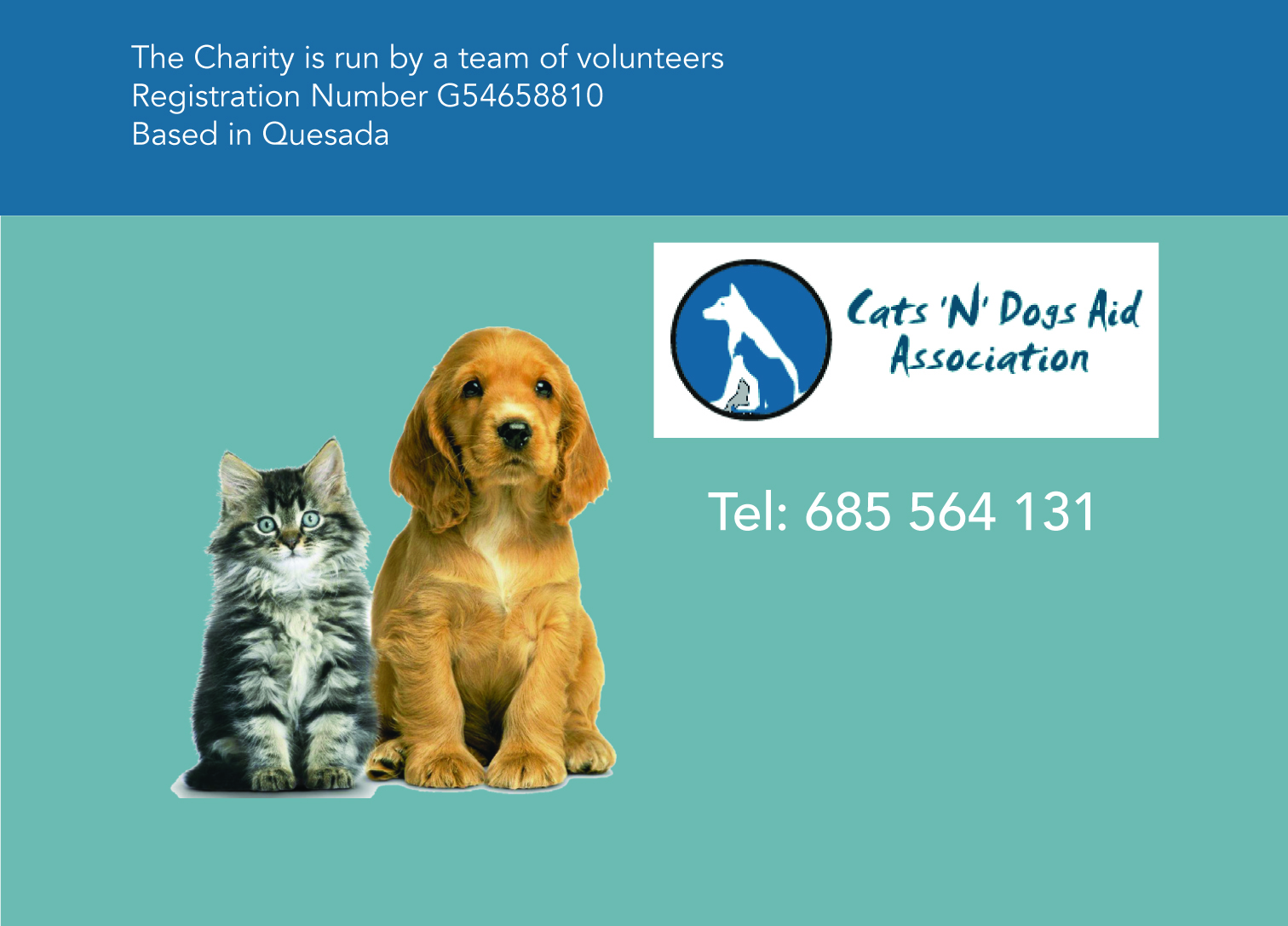 cats n dogs aid association gran alacant advertiser cats n dogs aid association formed in 2012 are a committee based organization seven people serving on the committee four of us previously working